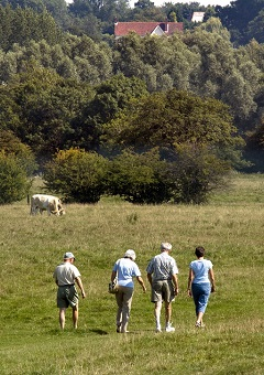 Walkers in the Dedham Vale