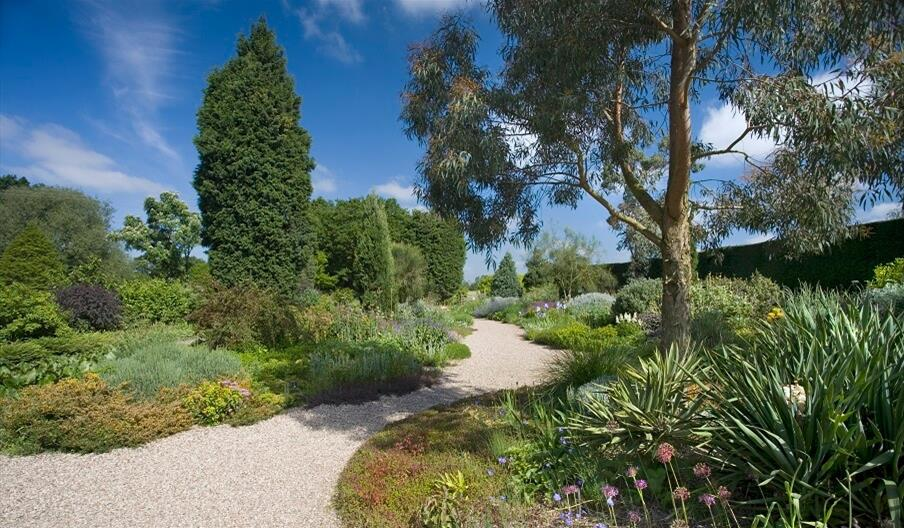 Beth Chatto's Plants & Gardens