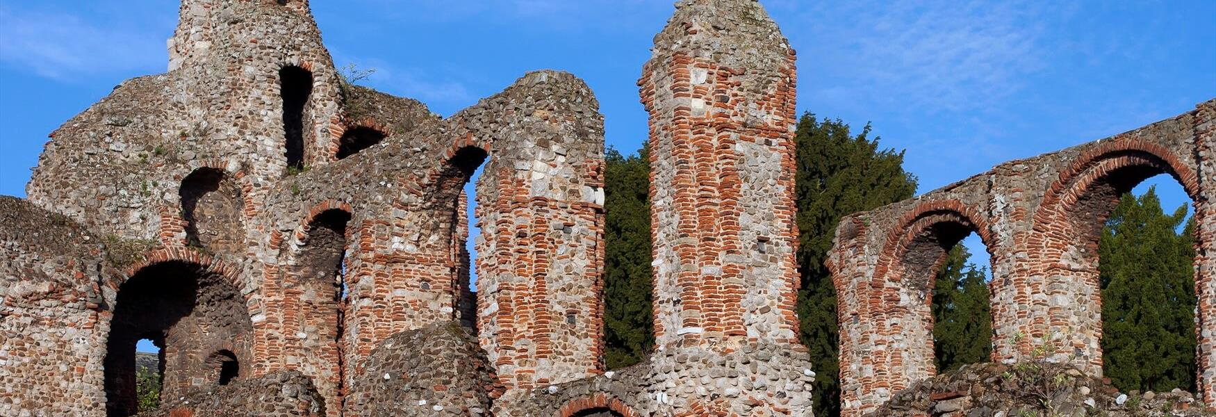 The ruins of St Botolph's Priory