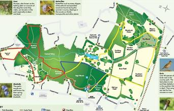 High Woods Country Park Walks
